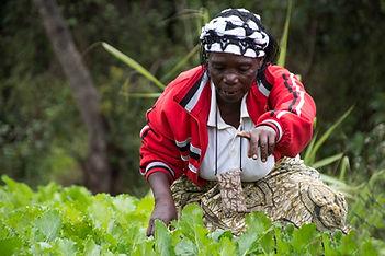 Vikapu Bomba woman artisan - Iringa