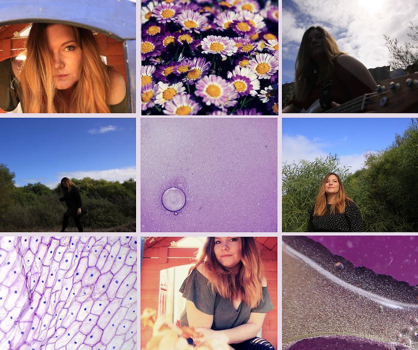 purple haze collage.png
