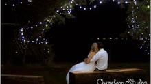 A celebration under the stars