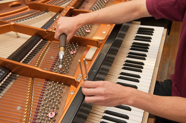 Expert piano tuning in Philadelphia metro area as well as Montgomery and Bucks County, PA
