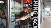 Paul Hepworth Bass 7-9-0