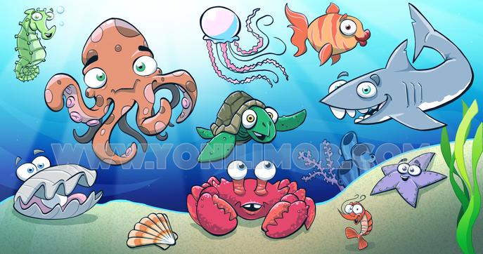 Underwater Fun - Yoni Limor