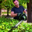 Thumbnail: EGO HT5100E 56v 51cm BATTERY POWERED HEDGE CUTTER