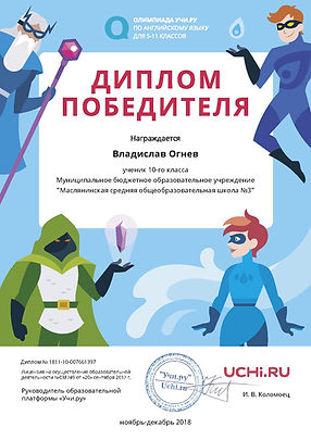 Diplom_Vladislav_Ognev_7507005 (1).jpg