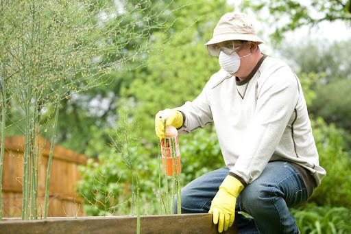 Spraying fertilizer on the garden - TassieCat