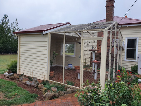Is This The Most Luxurious Cat Enclosure in Tasmania?