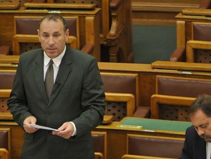 Fidesz frakcióvezető-helyettes: Tiltsák be a pride-ot!