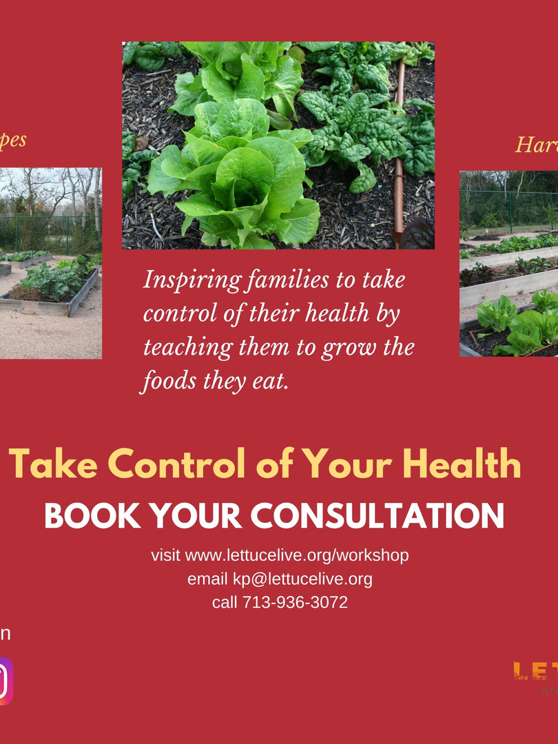 Edible Garden Consultation