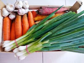 Skvělá čerstvá zelenina z mlýnu Podhora od Josefa Krůse a jeho syna Pepy. Vše, co jen trochu jde, nakupujeme od lokálních českých farmářů. Děkujeme jím!