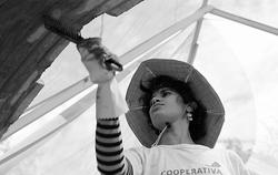 ramonipep2013
