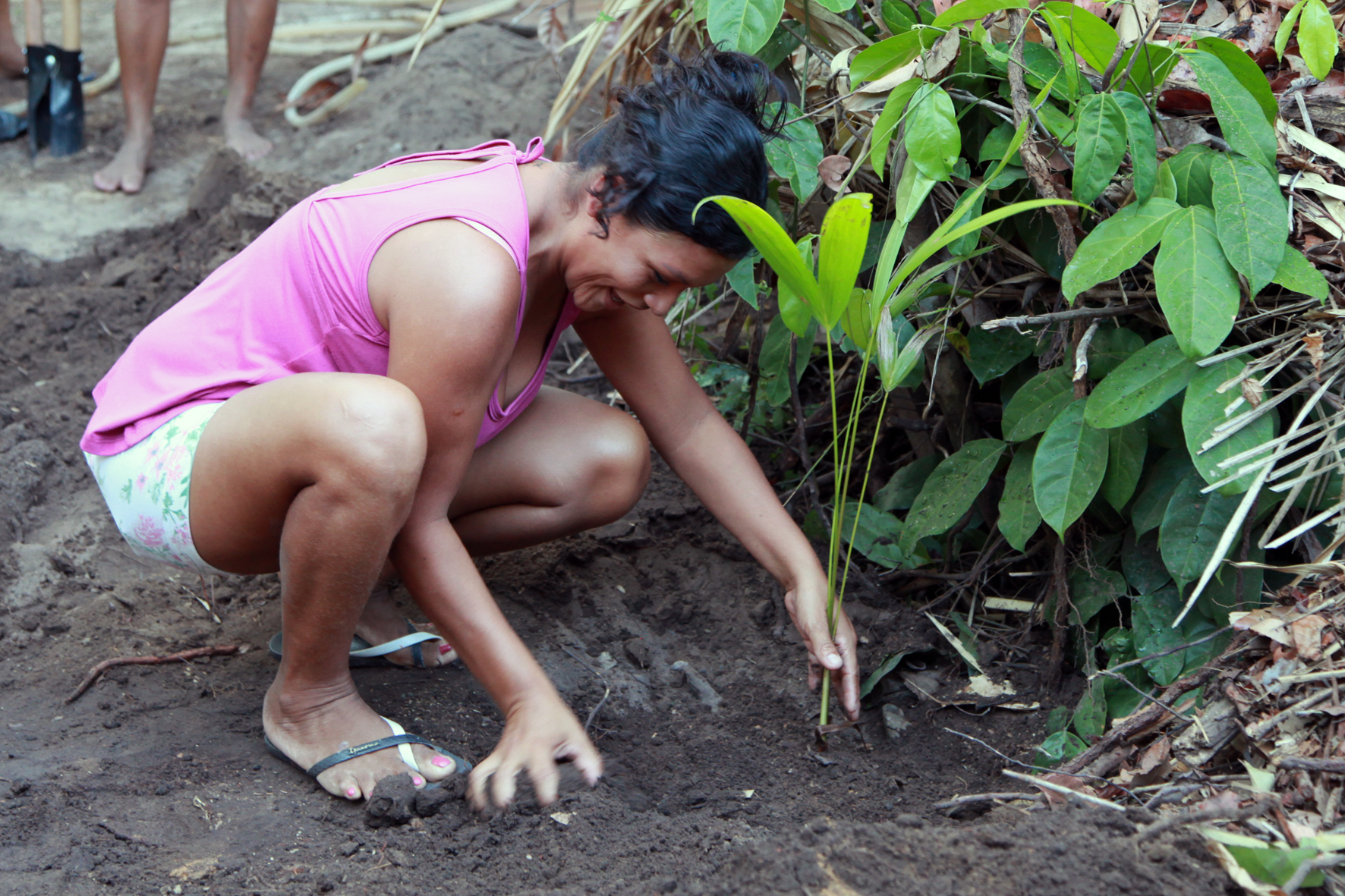 Plantar, plantar