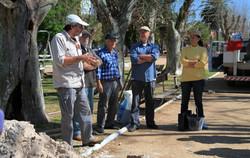 Comissão de Arborização Urbana