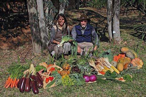 Agricultura Orgânica COM alojamento e alimentação