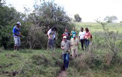 Projeto Pampa