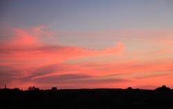 Céu da Pampa - IPEP