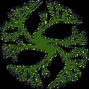 escola rama, taiana cavaçana, ipep, permacultura, permaculture brazil, orgânico