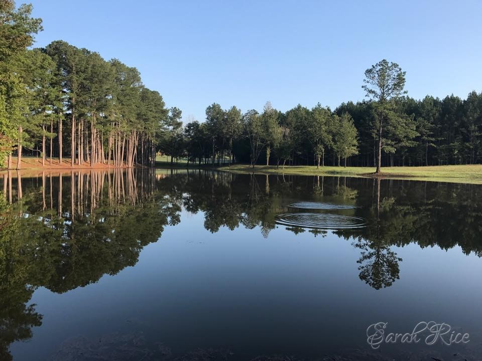 Photo of park pond