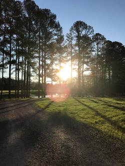 Photo of sunrise in park