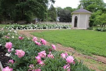 Photo of flower garden and gazebo