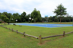 Photo of Frog Town Park