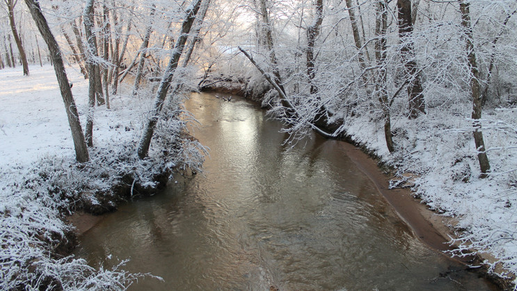 Winter at Pleasant Run Creek