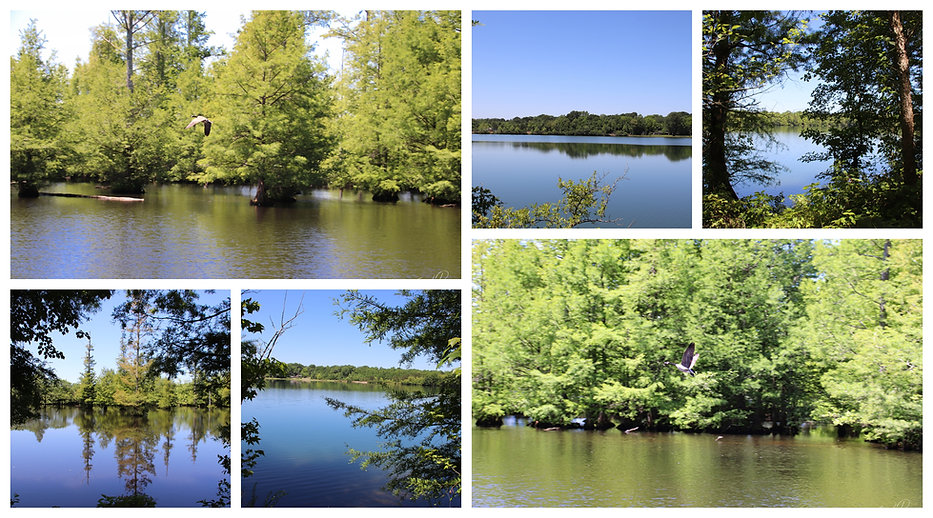 Collage of photos of Sand Beach Lake