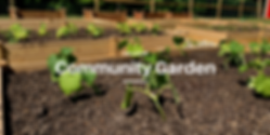 Community Garden resized.png