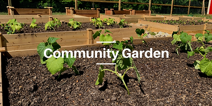 Community Garden resized.png
