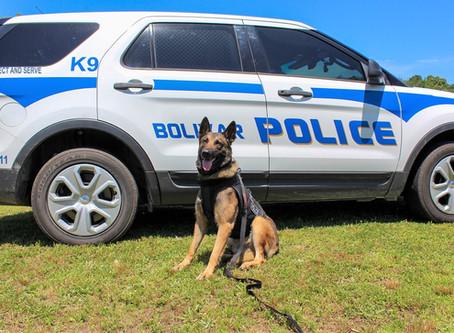 Bolivar Police Department Introduces K-9 Officer Buddy