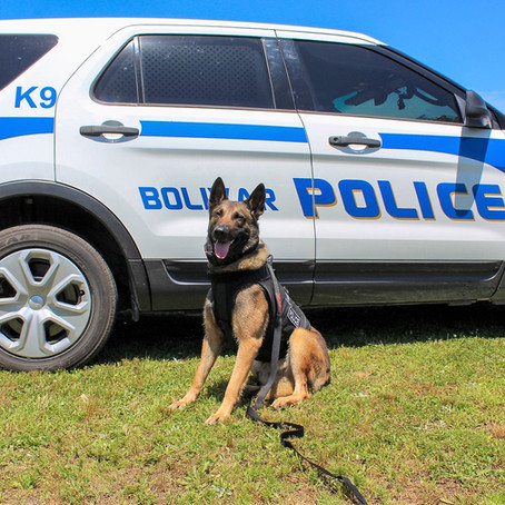 Bolivar Police Department Introduces K-9 Officer Buddy
