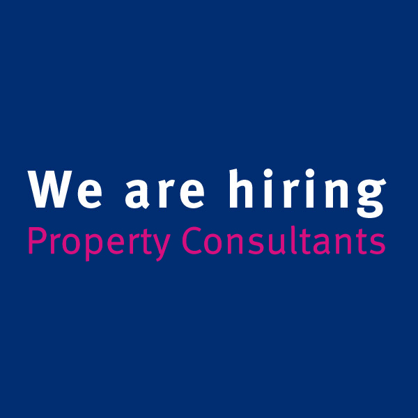 property consultant (2)