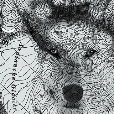Topo Wolf