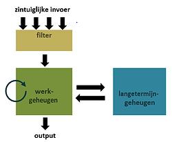 informatieverwerkingsmodel.PNG