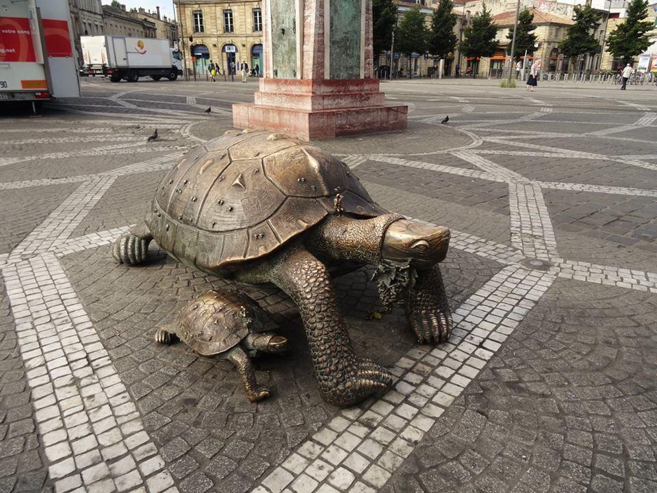 La tortue, symbole de Bordeaux
