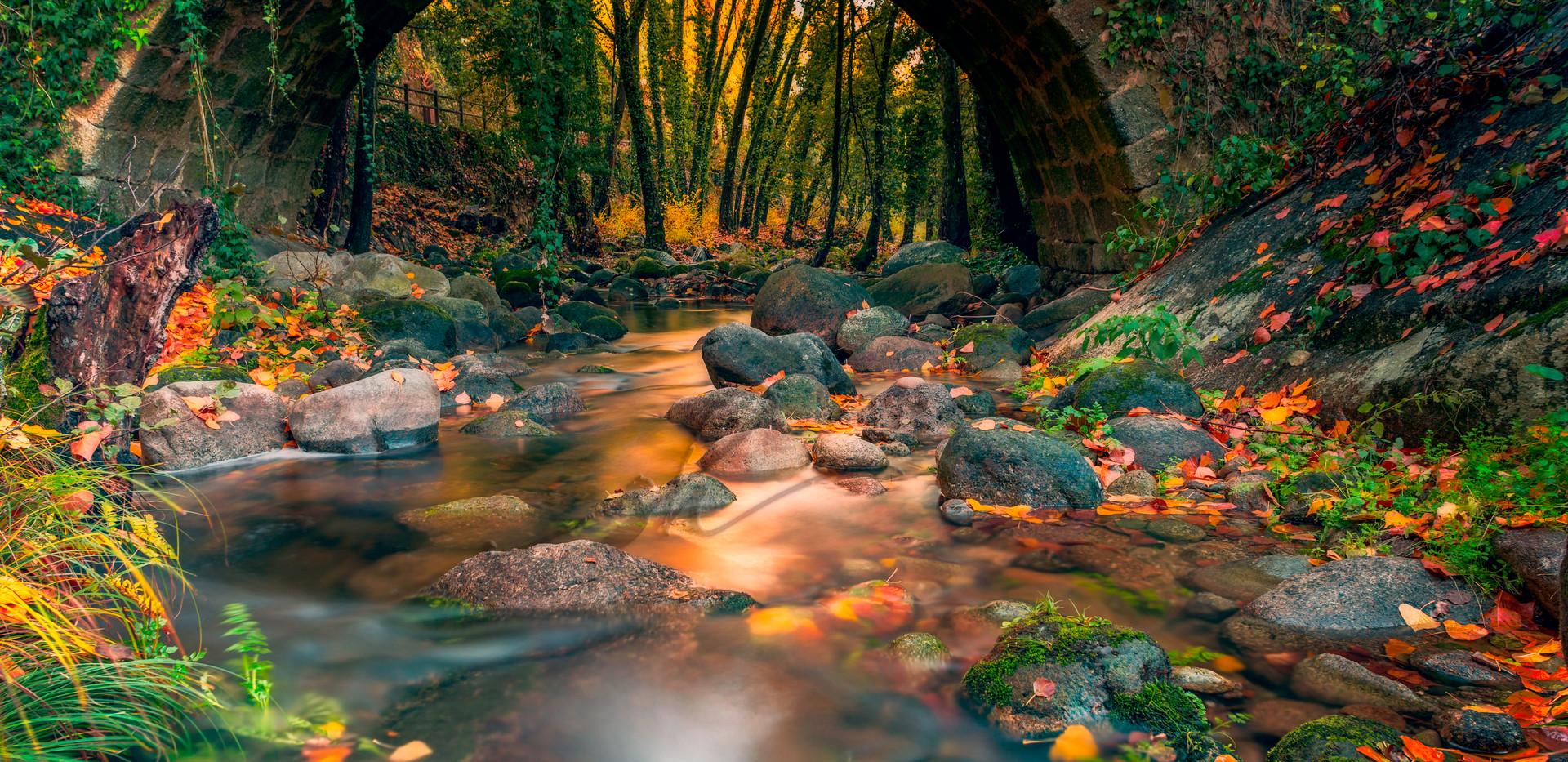 magical-autumn-on--the-vera.jpg