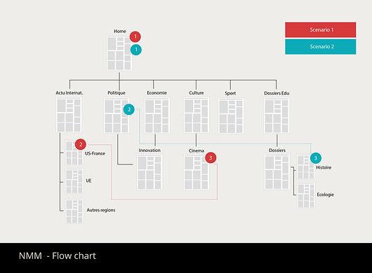 NMM flow chart.jpg