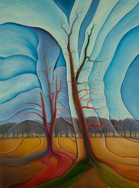 Деревья в Ричмондском парке/ The Trees in Richmond Park