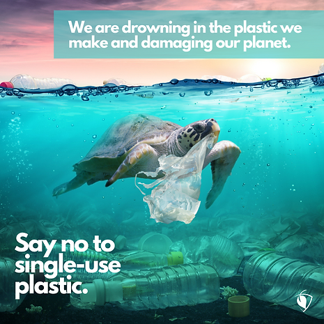 Say No to Single-use Plastic.png