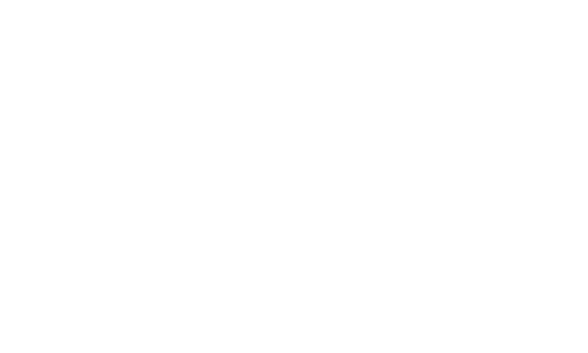 5-10 year strategy
