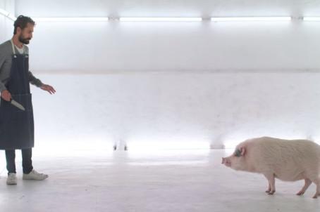 Curta mostra como seria se você tivesse que matar animais para se alimentar