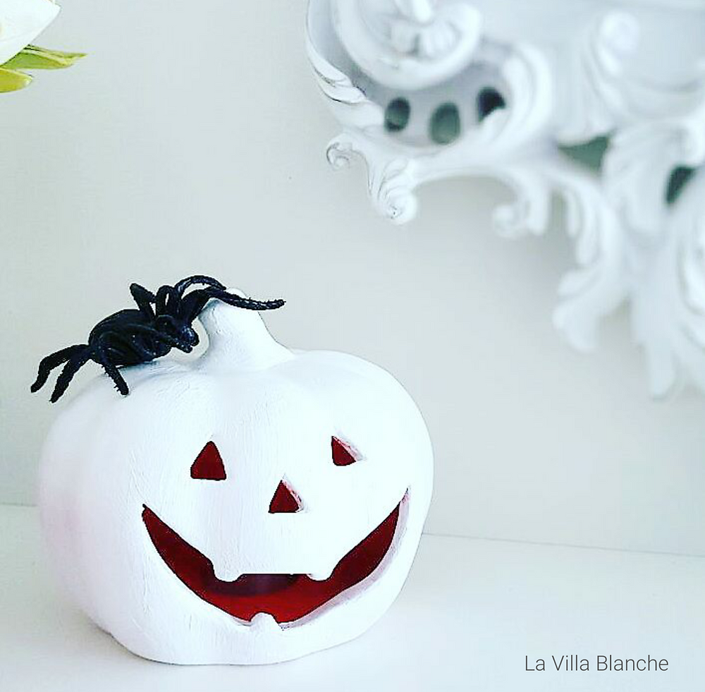 cute white pumpkin