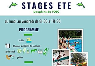 stage mini TOEC 2020.png
