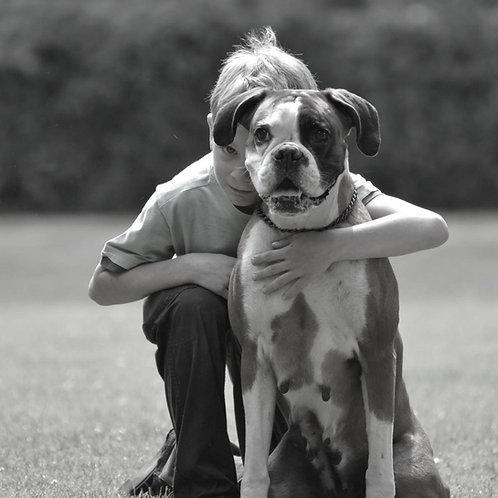 Kinder-Hundeführerschein