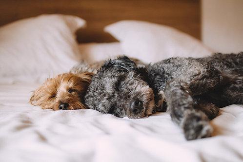 Bettwäsche pro Person