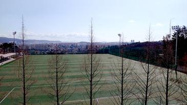 울산다목적축구장