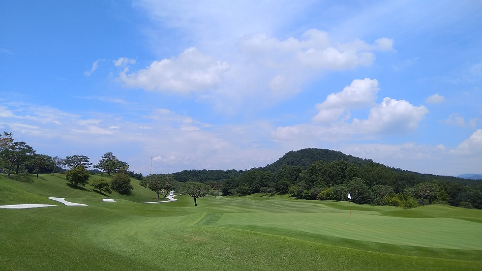 golf-course-2840828_1920.jpg