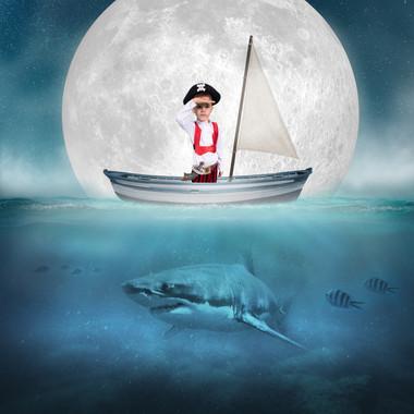 OceanDigitalBackdrop-Shark copy1.jpg