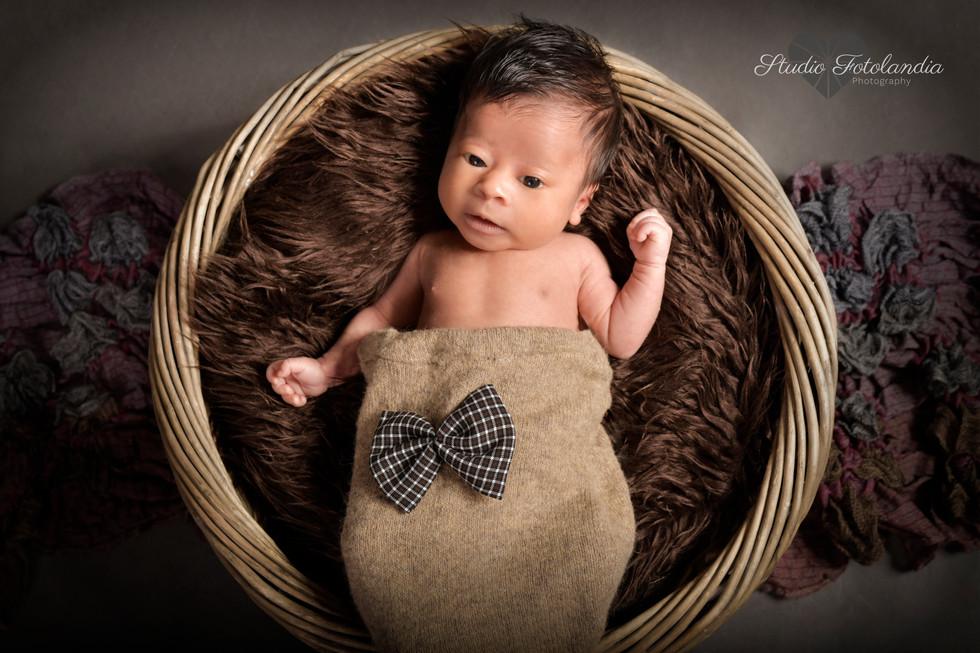 photographer newborn geneva studio fotol