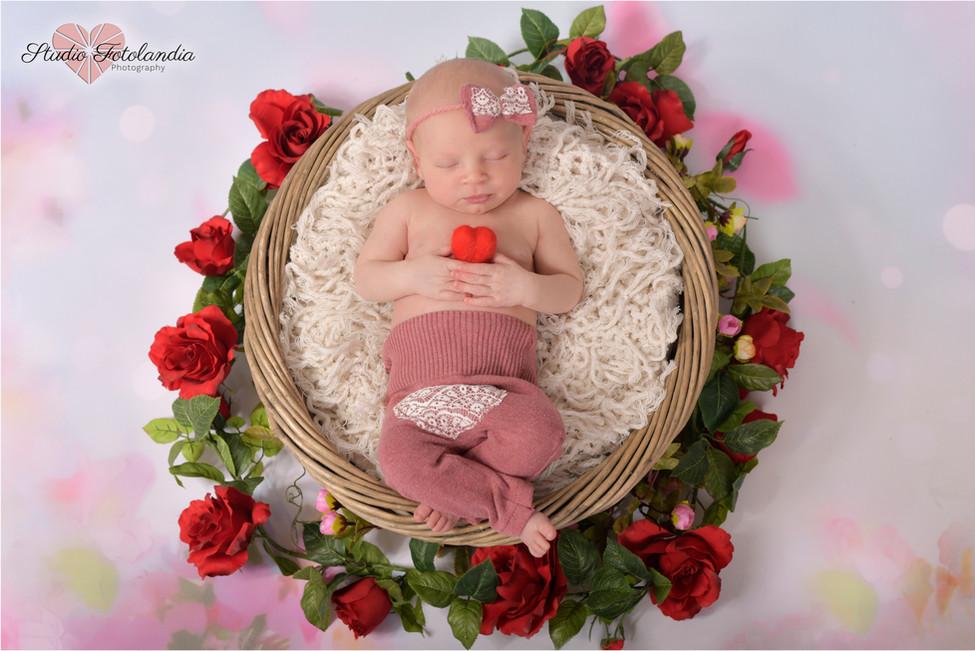newborn photographer english geneva foto