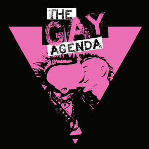 "THE GAY AGENDA: ""HOMO RIOT"" HARDCORE PUNK"